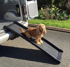 RayGar Dog Pet Ramp placed on a vehicle