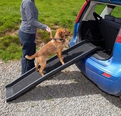 Easipet Pet Ramp For Dogs placed on a vehicle