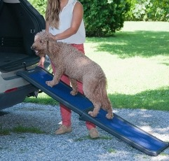 Pet Gear Travel-Lite Bi-Fold Full Ramp placed on a vehicle