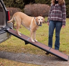 Pet Gear Travel-Lite Tri-Fold Dog Ramp placed on a vehicle