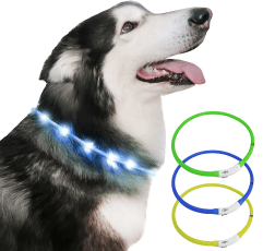Just Pet Zone Dog Collar With Light on a white background