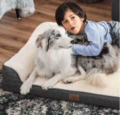 Bedsure Orthopedic Dog Beds with kid on the floor