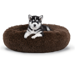 The Dog's Bed Sound Sleep Donut Dog Bed on white background
